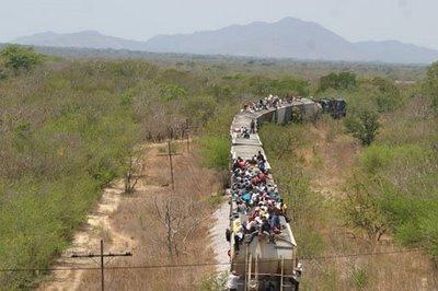 Tren_migrantes