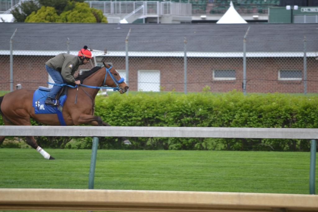 Parte del equipo humano que ayuda a entrenar y cuidar a los valiosos caballos que correrán hoy en el Derby de Kentucky son inmigrantes guatemaltecos, como el que aparece en la foto. Fotografía: Luis De León, Acentos
