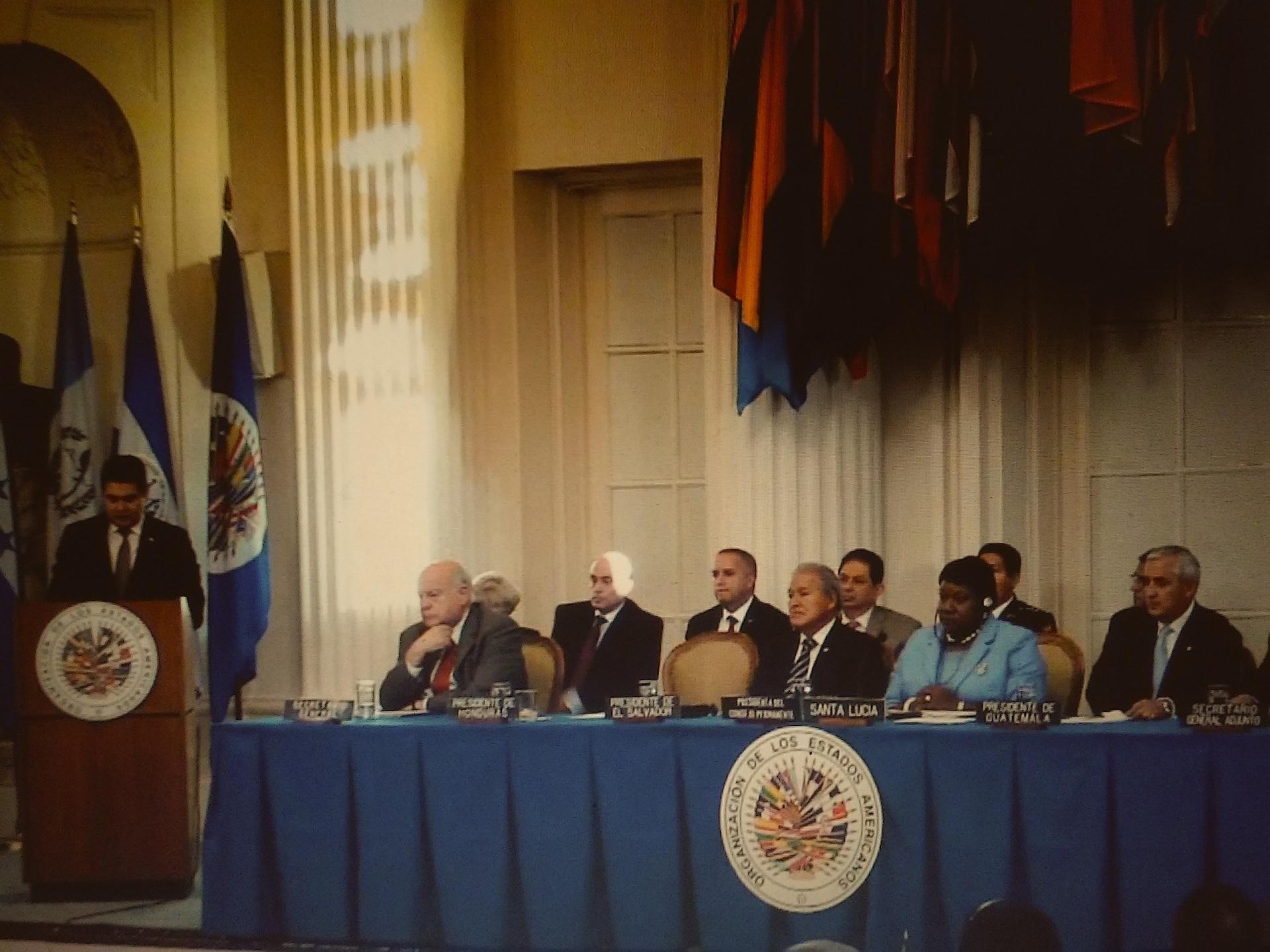 Los Presidentes de El Salvador, Guatemala y Honduras hablaron ante la Asamblea de la OEA sobre la crisis humanitaria de miles de niños procedentes de sus países que están detenidos en territorio estadounidense por haber entrado ilegalmente. Fotografía: Live Streaming asamblea de la OEA
